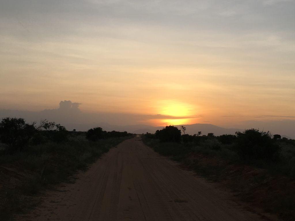Safari im Tsavo East National Park, Kenia