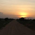 Urlaub in Kenia, zu Besuch im Tsavo Nationalpark