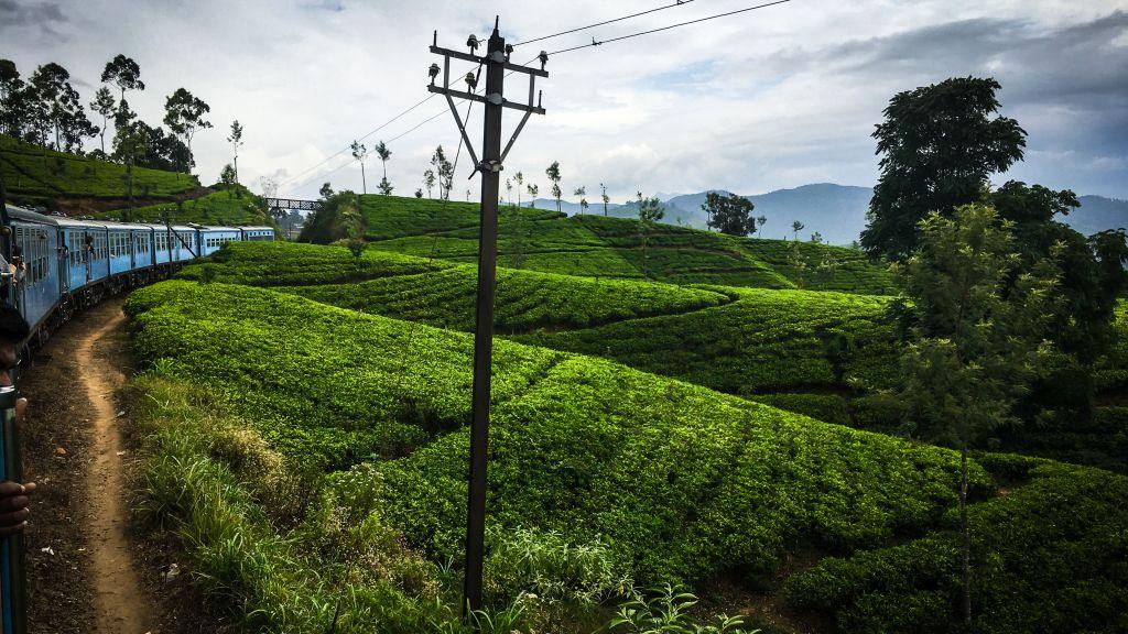 Zugfahrt nach Ella, Sri Lanka