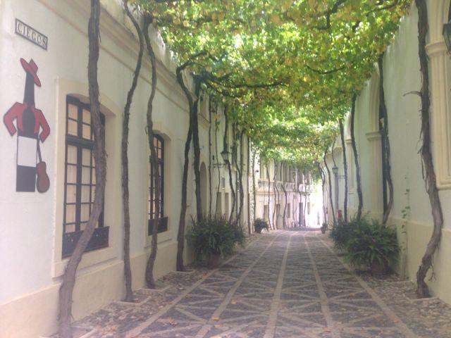 Jerez, Andalusien, Bodega