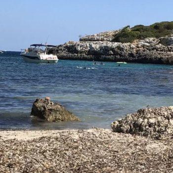 Mallorca, Immobilie, Umbau, Kiten