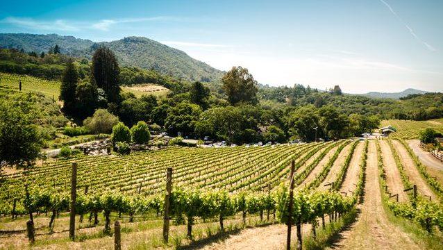 Kalifornien: Napa und Sonoma Valley