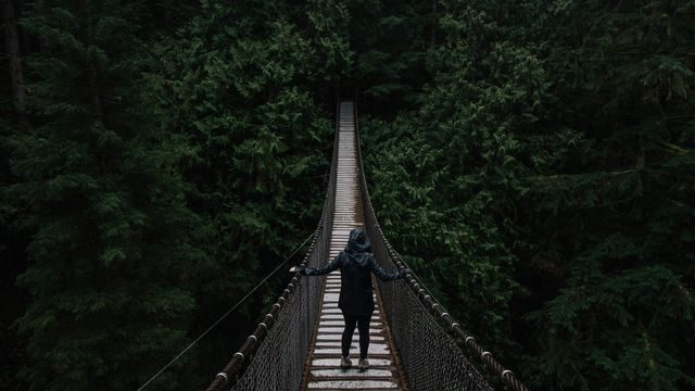Suspension Bridge, Vancouver