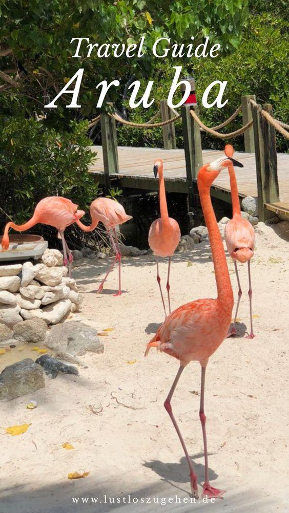 Reisetipps für deine Reise nach Aruba, der Aruba Travel Guide