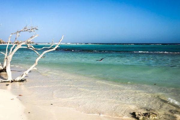 Westküste Aruba, Fotoparade