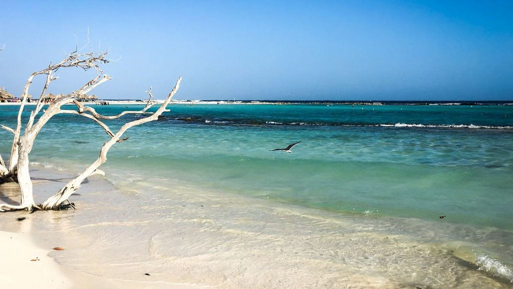 Westküste Aruba, Kitesurfen im Winter