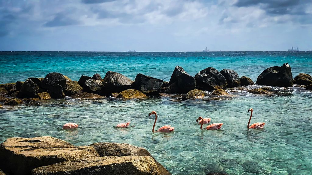 Die schönsten Strände Arubas, Renaissance Private Island