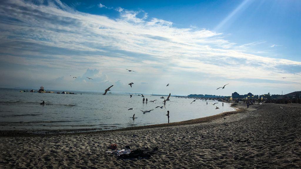 Blogparade: Europa und das Meer, Südstrand, Insel Fehmarn