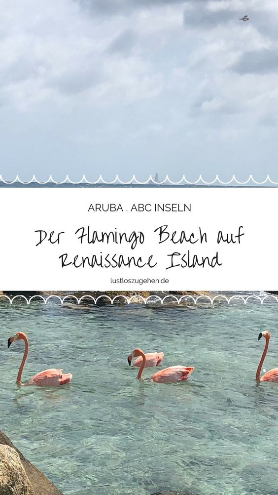 Urlaub auf Aruba, Renaissance Island, Flamingos