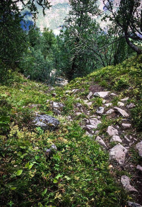 Norwegen, Wanderung auf den Storehaugen