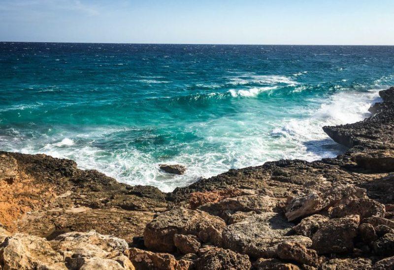 Die Baleareninsel Mallorca hat im Frühling schon jede Menge zu bieten!