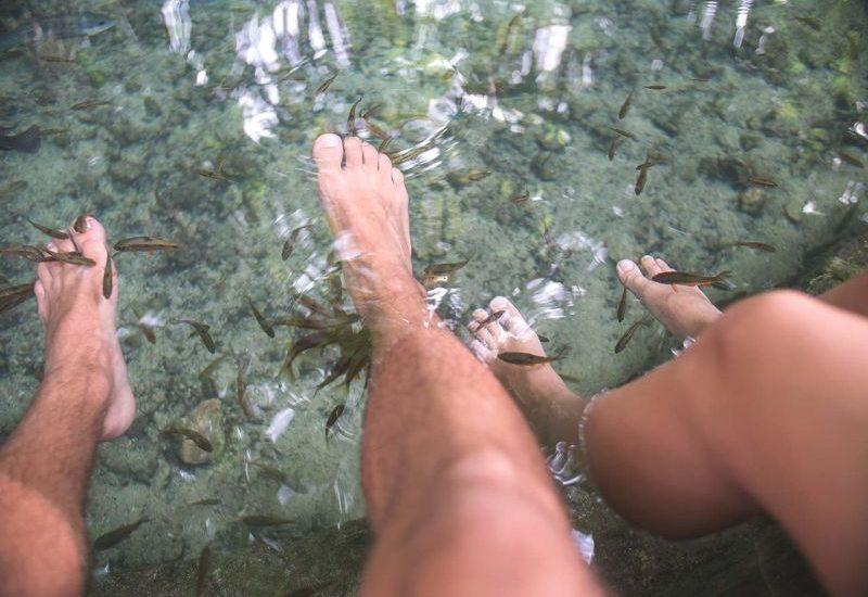 Füße werden von Fischen angeknabbert - Fish Spa Siquijor