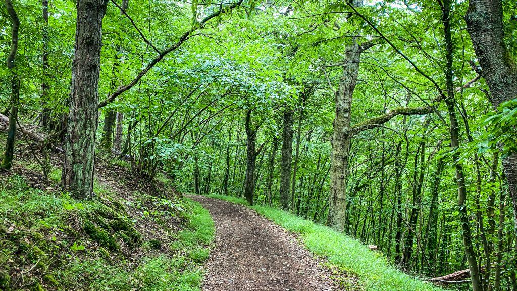 Lahn Camino, Natur pur auf den Jakobsweg