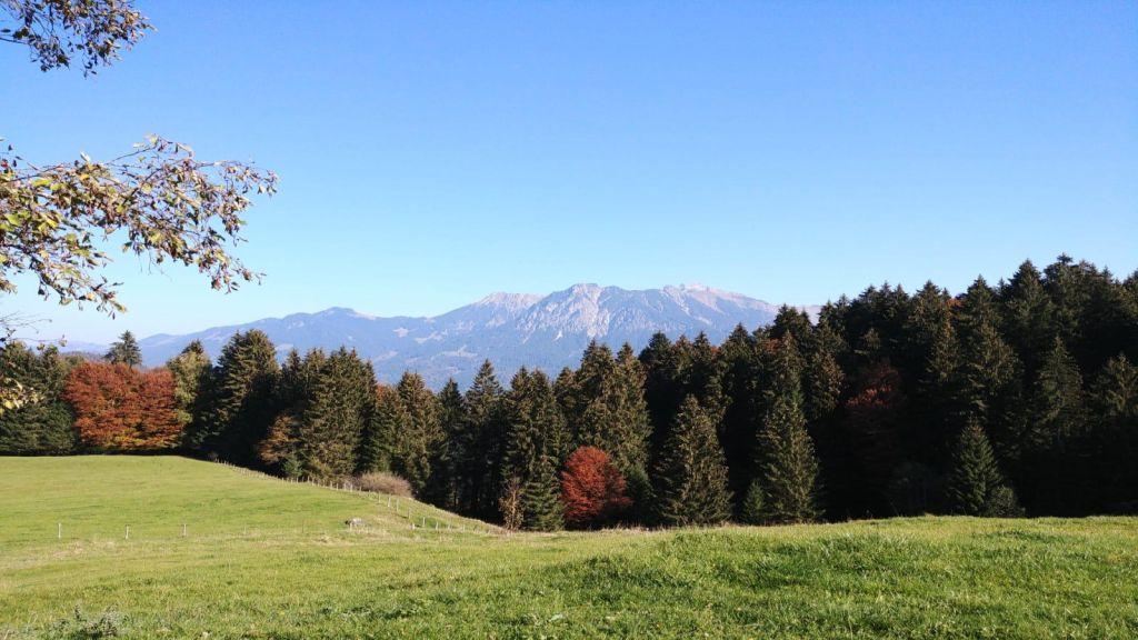 Allgäu_Blick auf das Nebelhorn