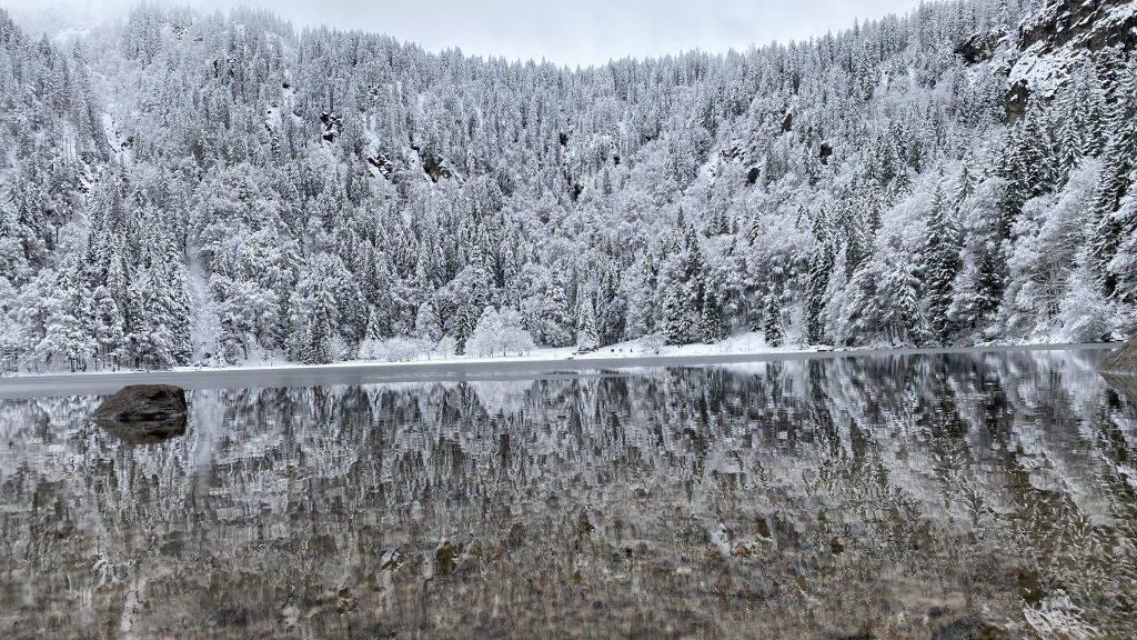 Ausflugsziele im Schwarzwald, Feldsee