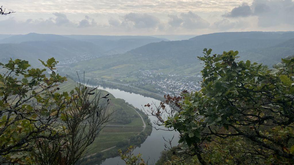 Wandern an der Mosel: Aussichtspunkt Moselschleife Bremm