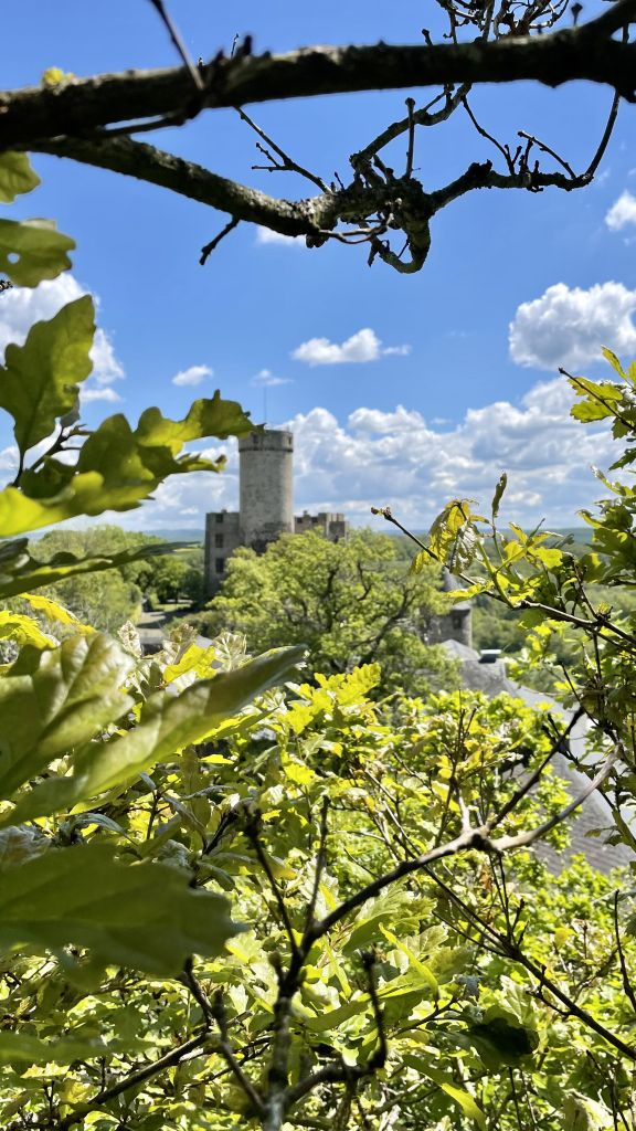 Wandern an der Mosel, Burg Pyrmont
